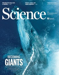 Why whales are big but not bigger: Physiological drivers and ecological limits in the age of ocean giants
