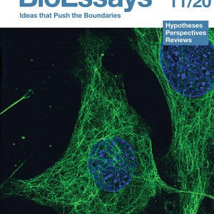 BioEssays journal cover, from Wiley.