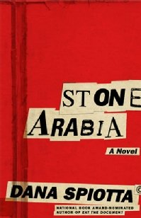 Dana Spiotta's latest book, Stone Arabia