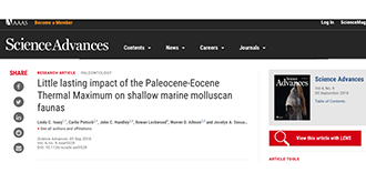 Little lasting impact of the Paleocene-Eocene Thermal Maximum on shallow marine molluscan faunas
