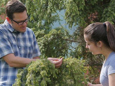 Associate Professor Jason Fridley works in SU's Climate Change Garden with biology student Paige Armas