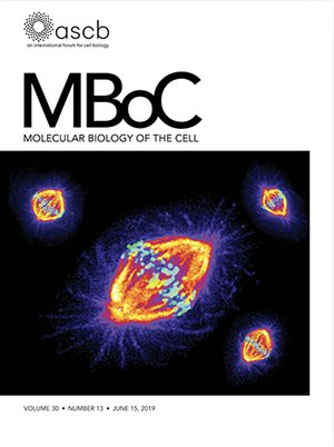 Cover of Molecular Biology of the Cell volume 30, issue 13,  June 15, 2019