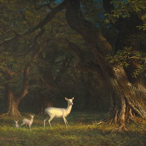 Albino Doe and Two Fawns in Forest, 1875 by Albert Bierstadt