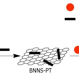 graphic illustrating honeycomb layers of BNNS with TiO2 molecules