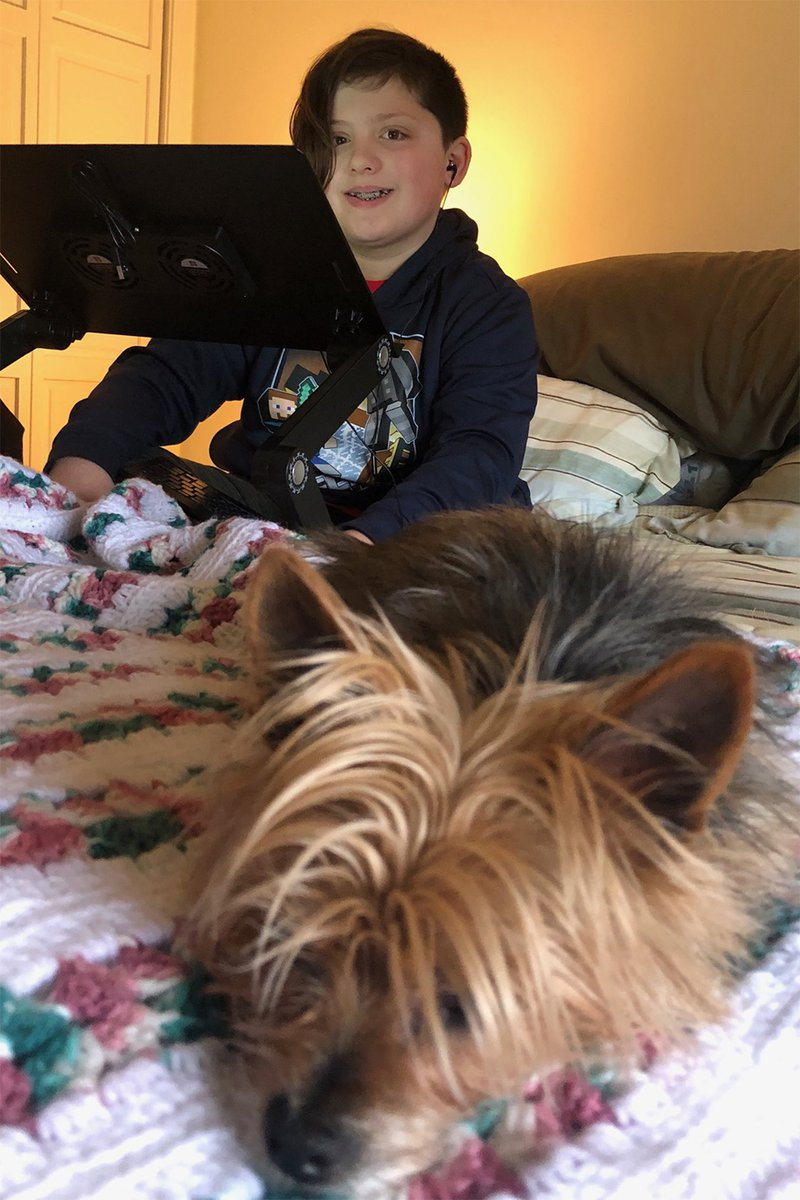 child and dog on bed with laptop