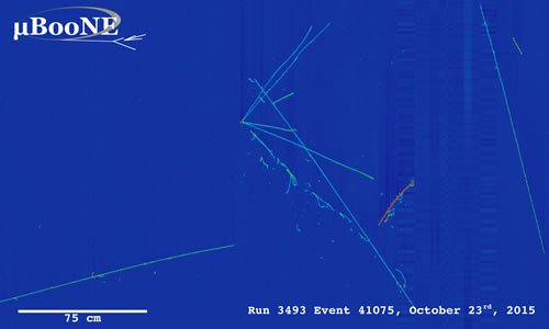 A display showing a neutrino event candidate in the MicroBooNE detector (Courtesy of Fermilab)