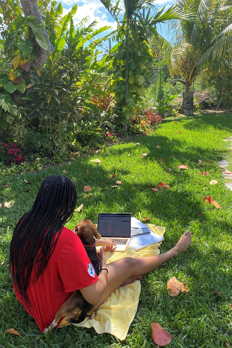 girl on grass with laptop